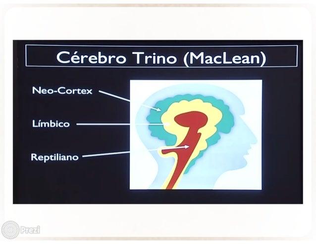 Cérebro Trino MacLean  Neo-Cortex  Límbico  Reptiliano