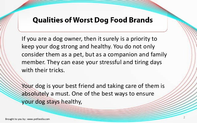 qualities of a dog
