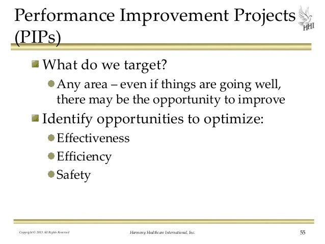 the performance improvement project Projects and the continued development of potential lean principles of performance improvement a variety of performance improvement techniques, such as lean.