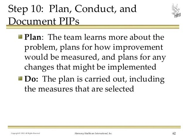 Quality Assurance Performance Improvement 12 Steps to Excellence – Template for Performance Improvement Plan