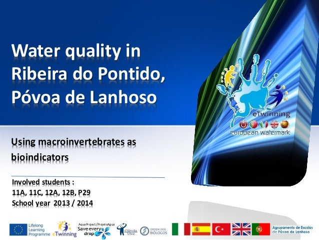 AquaProject/ProjetoAgua Water quality in Ribeira do Pontido, Póvoa de Lanhoso Using macroinvertebrates as bioindicators In...