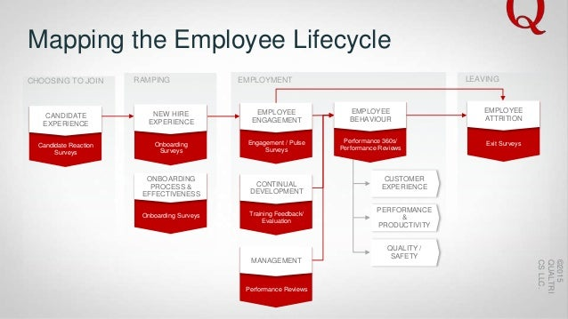 employment transition over life cycle