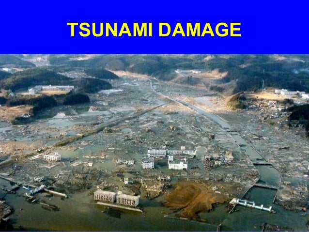 """essay on tsunami in japan 2011 Free essay: """"on march 11, 2011 at 11:46 pm cst japan was hit with an  earthquake of 90 magnitude, followed by a tsunami shortly afterward."""