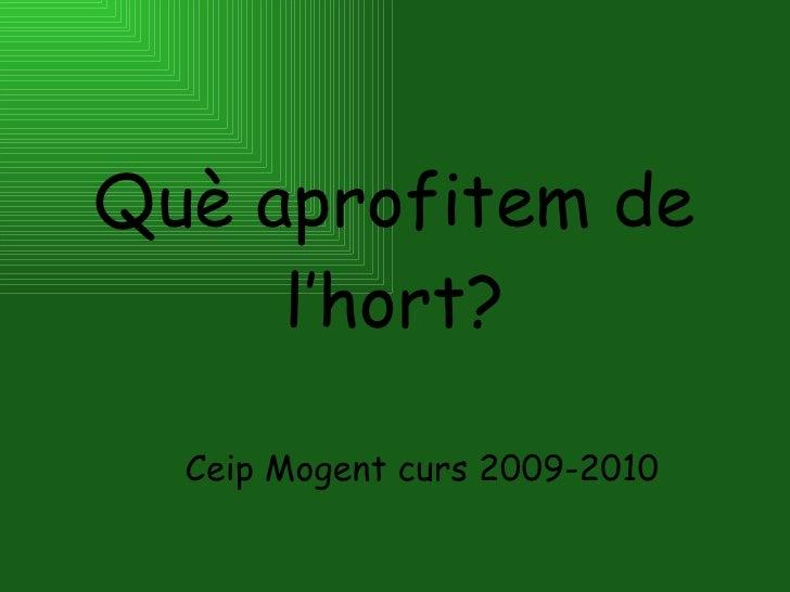 Què aprofitem de l'hort? Ceip Mogent curs 2009-2010