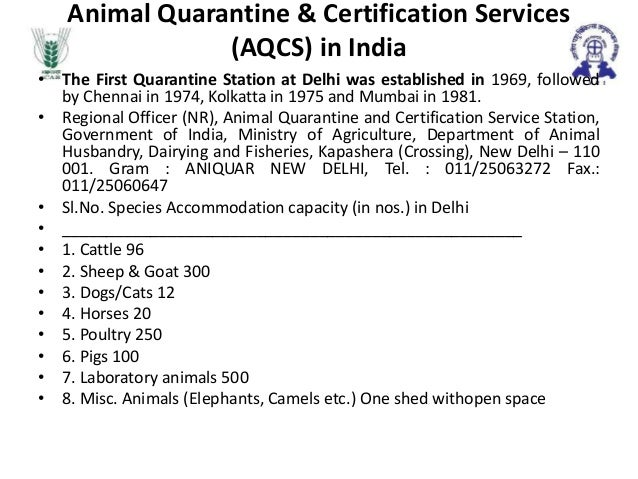 health certificate for dogs