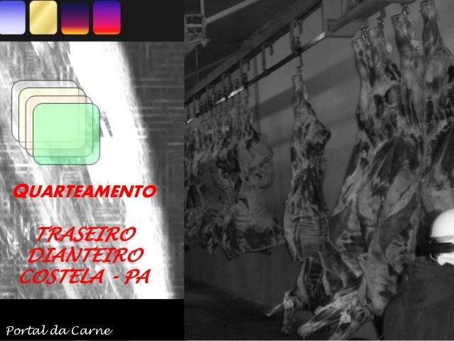 QUARTEAMENTO TRASEIRO DIANTEIRO COSTELA - PA Portal da Carne
