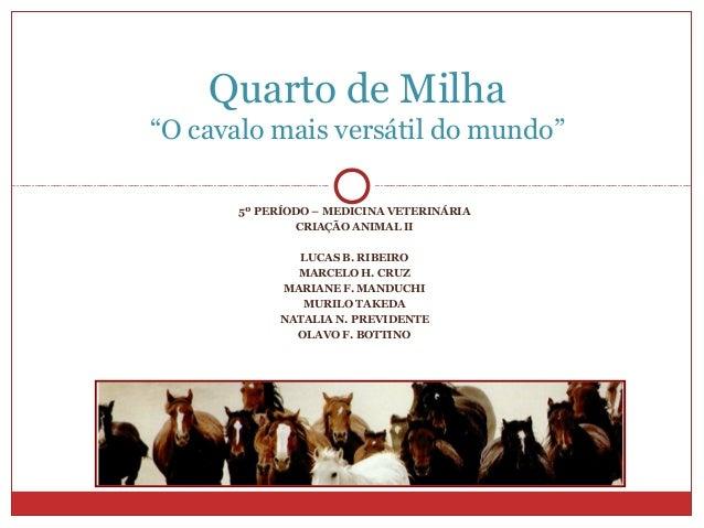 5º PERÍODO – MEDICINA VETERINÁRIA CRIAÇÃO ANIMAL II LUCAS B. RIBEIRO MARCELO H. CRUZ MARIANE F. MANDUCHI MURILO TAKEDA NAT...