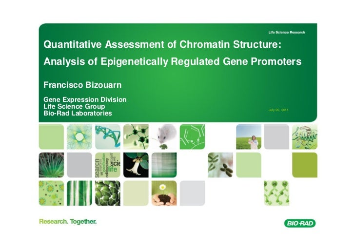 Quantitative Assessment of Chromatin Structure:Analysis of Epigenetically Regulated Gene PromotersFrancisco BizouarnGene E...