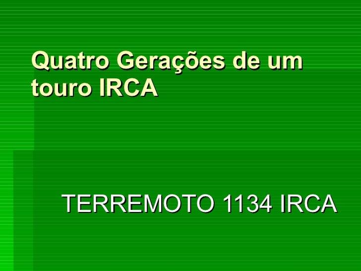 Quatro Gerações de um touro IRCA TERREMOTO 1134 IRCA