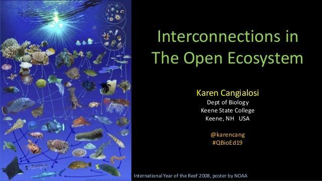 Interconnections in The Open Ecosystem Karen Cangialosi Dept of Biology Keene State College Keene, NH USA @karencang #QBio...