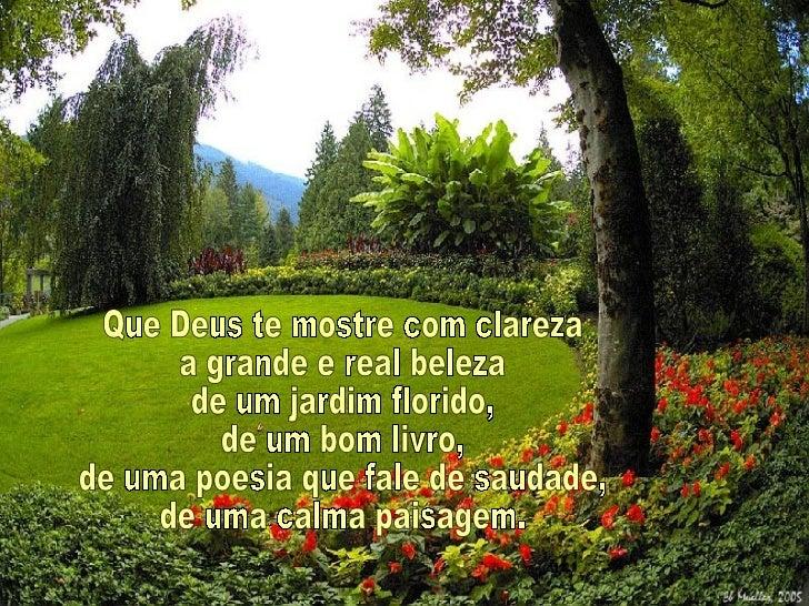 Que Deus te mostre com clareza a grande e real beleza de um jardim florido, de um bom livro, de uma poesia que fale de sau...