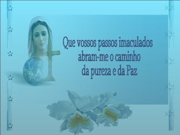 Que vossos passos imaculados abram-me o caminho da pureza e da Paz