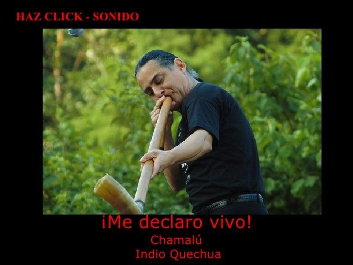¡Me declaro vivo! Chamalú  Indio Quechua HAZ CLICK - SONIDO