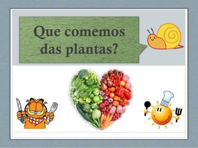 Que comemos das plantas?