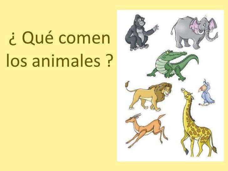 ¿ Qué comen los animales ?