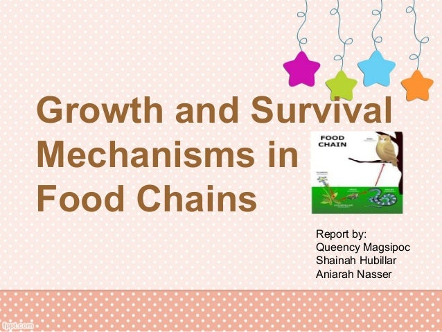 Growth and SurvivalMechanisms inFood Chains              Report by:              Queency Magsipoc              Shainah Hub...