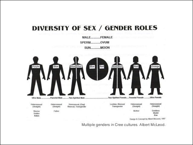 Multiple genders in Cree cultures. Albert McLeod.
