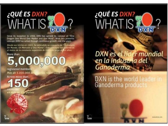 Que es dxn