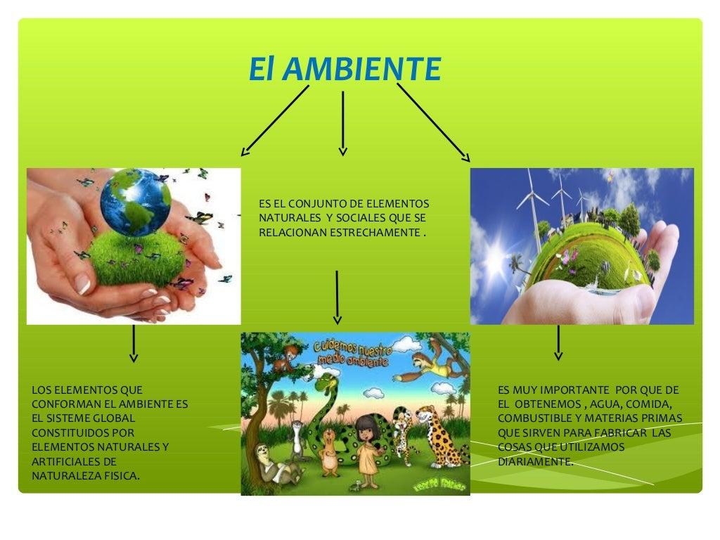 Que es el ambiente y bases de datos - Humidificar el ambiente ...