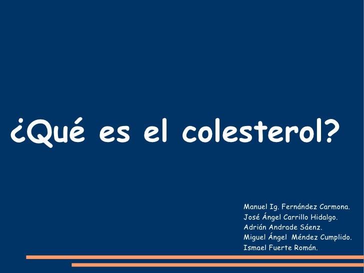 ¿Qué es el colesterol? Manuel Ig. Fernández Carmona. José Ángel Carrillo Hidalgo. Adrián Andrade Sáenz. Miguel Ángel  Ménd...