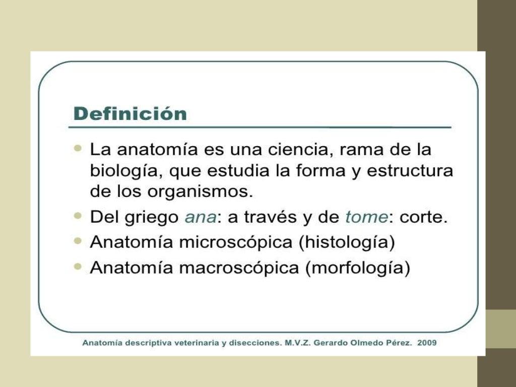 Que es la anatomía diapositivas