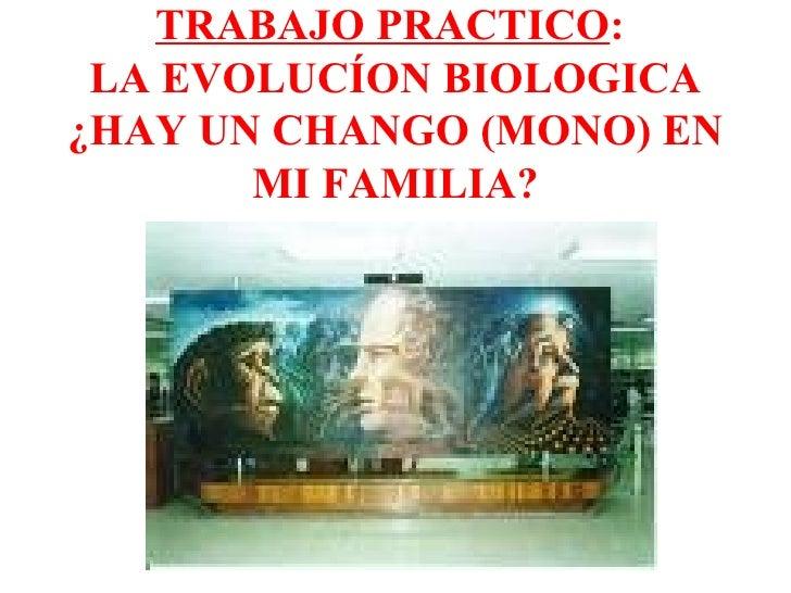 TRABAJO PRACTICO :  LA EVOLUCÍON BIOLOGICA ¿HAY UN CHANGO (MONO) EN MI FAMILIA?