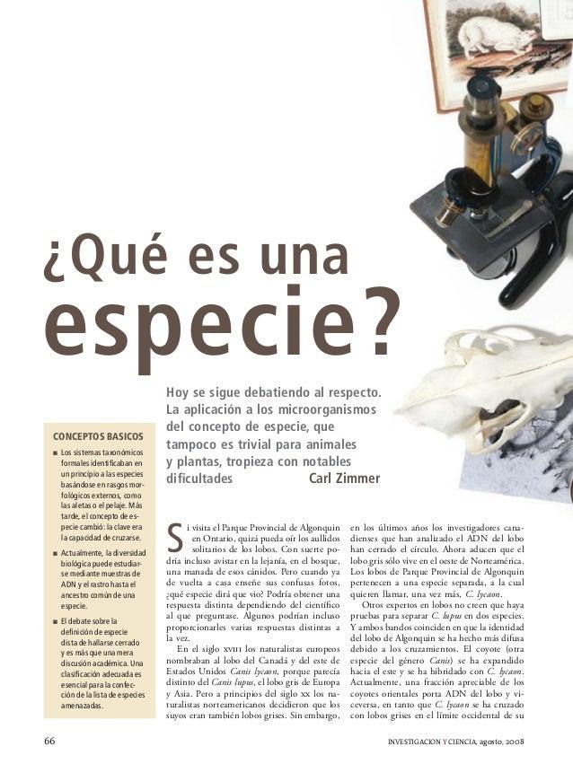 Que es una especie - carl zimmer (IyC ago 2008)