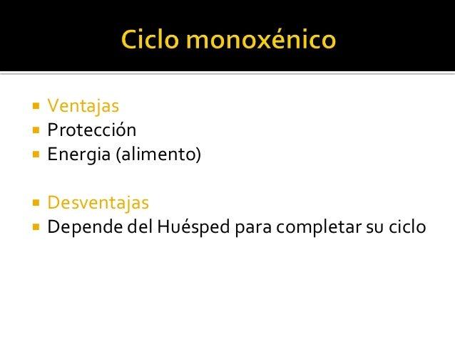 Ciclo biologico monoxenico
