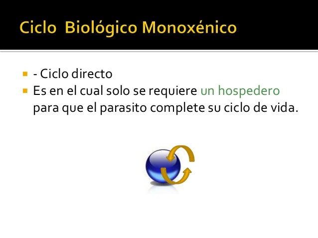  - Ciclo directo  Es en el cual solo se requiere un hospedero para que el parasito complete su ciclo de vida.