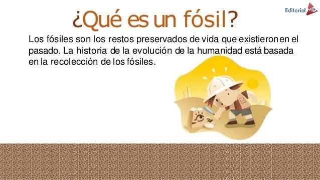 K Es Un Bisonte Que es un fosil