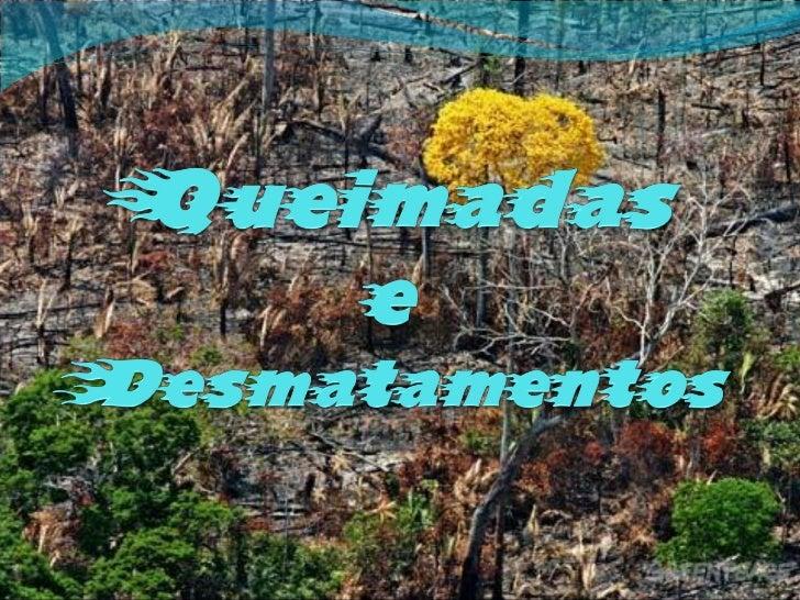 Queimadas Infelizmente, o Brasil é o 4º maior poluidor do clima do mundo. Grande parte das emissões de gases para a atmos...