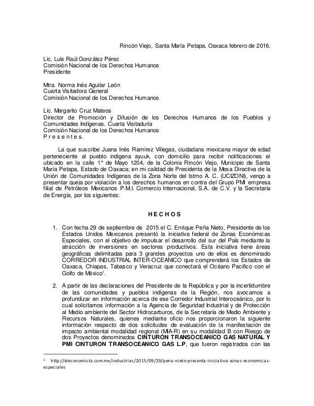 Rincón Viejo, Santa María Petapa, Oaxaca febrero de 2016. Lic. Luis Raúl González Pérez Comisión Nacional de los Derechos ...