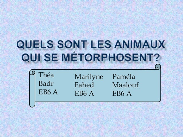 Théa Badr EB6 A Marilyne Fahed EB6 A Paméla Maalouf EB6 A