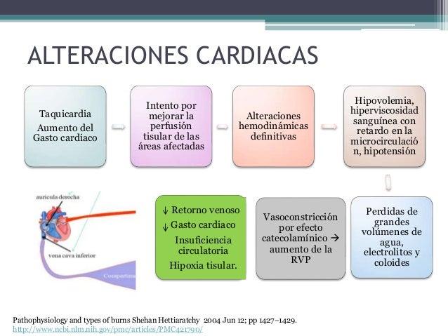 ALTERACIONES CARDIACAS Taquicardia Aumento del Gasto cardiaco Intento por mejorar la perfusión tisular de las áreas afecta...