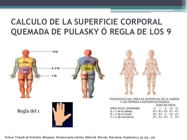 CALCULO DE LA SUPERFICIE CORPORAL QUEMADA DE PULASKY Ó REGLA DE LOS 9 Regla del 1 Nelson. Tratado de Pediatría. Kliegman D...