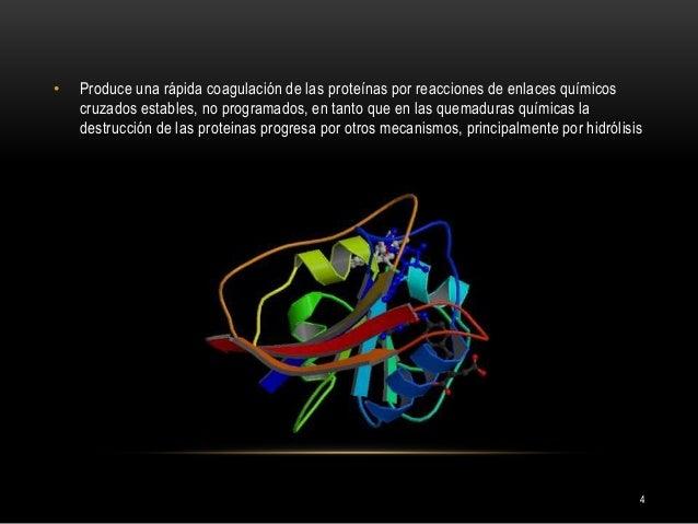 4 • Produce una rápida coagulación de las proteínas por reacciones de enlaces químicos cruzados estables, no programados, ...
