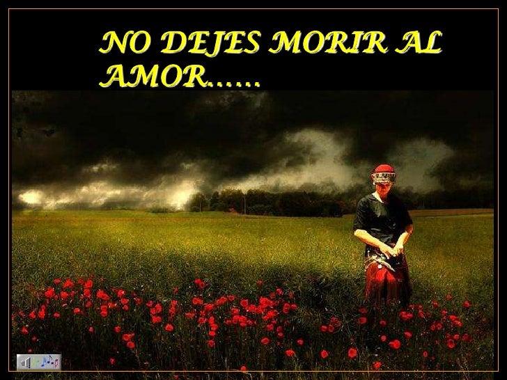 NO DEJES MORIR AL AMOR……<br />