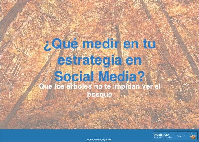 ¿Qué medir en tu estrategia en  Social Media? Que los árboles no te impidan ver el bosque cc_by_nicolas_raymond