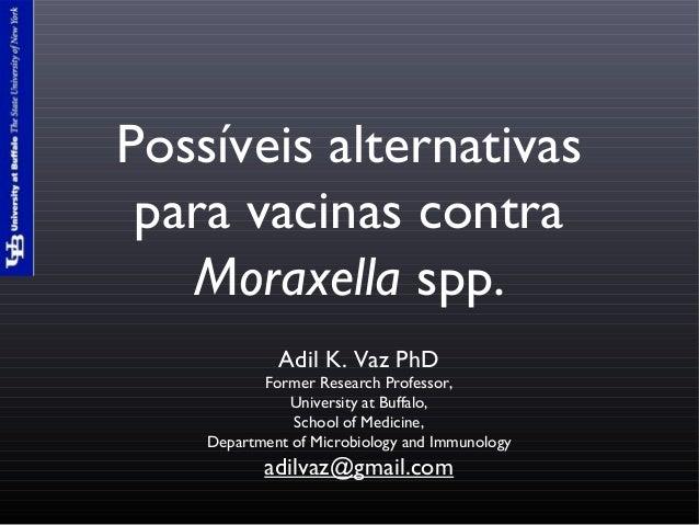 Possíveis alternativas para vacinas contra Moraxella spp. Adil K. Vaz PhD Former Research Professor, University at Buffalo...