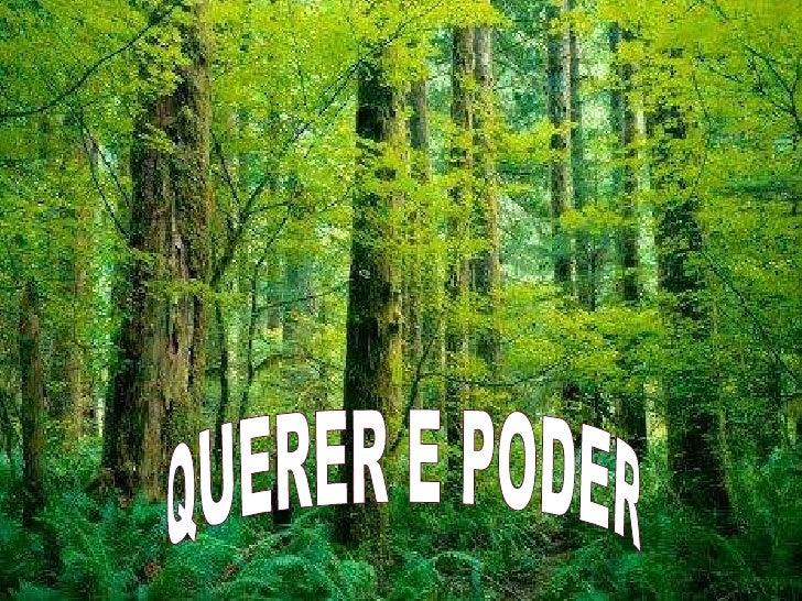 QUERER E PODER