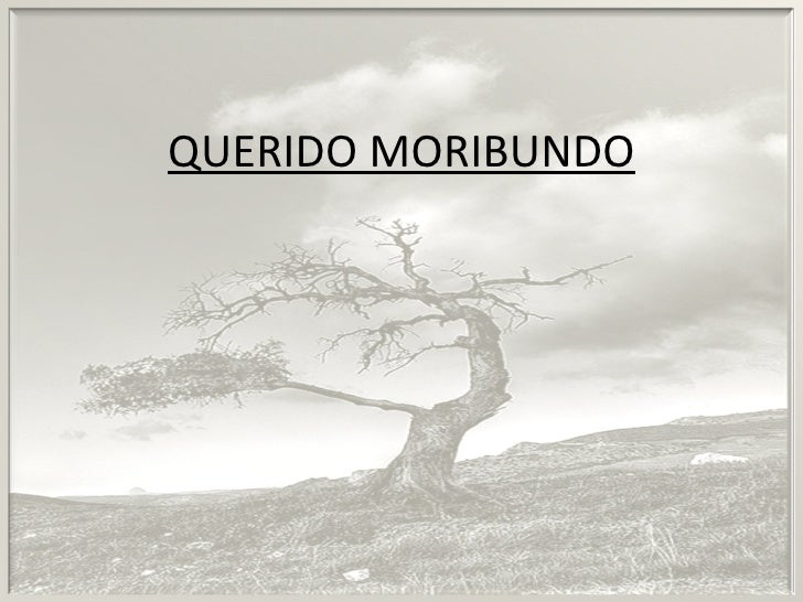 QUERIDO MORIBUNDO