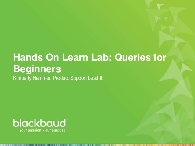 Hands On Learn Lab: Queries for Beginners Kimberly Hammer, Product Support Lead II