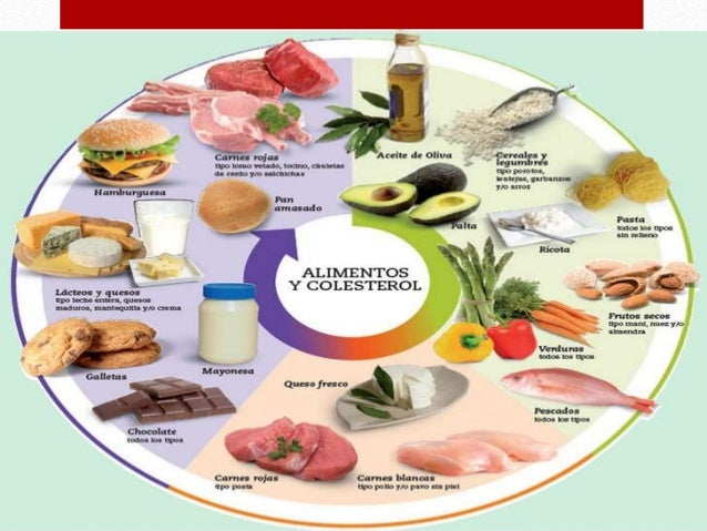 Qu es el colesterol - Alimentos q producen colesterol ...