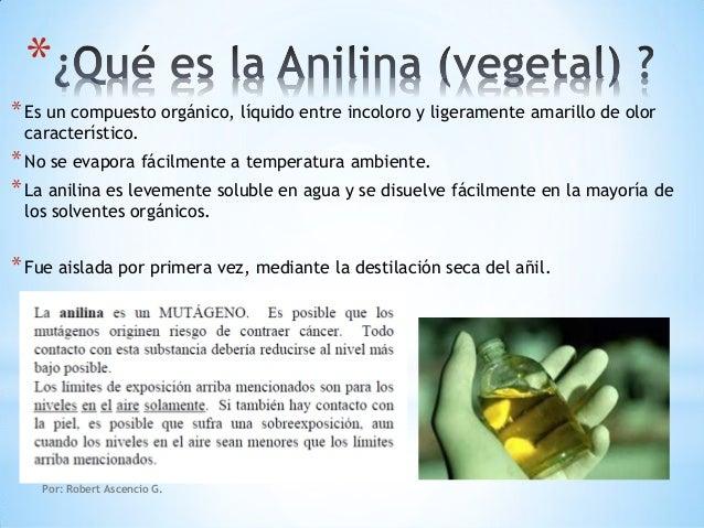 Qué Es La Anilina (vegetal