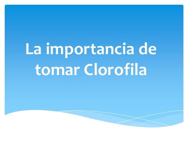 La importancia de tomar Clorofila