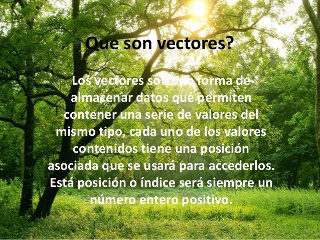 Que son vectores? Los vectores son una forma de almacenar datos que permiten contener una serie de valores del mismo tipo,...