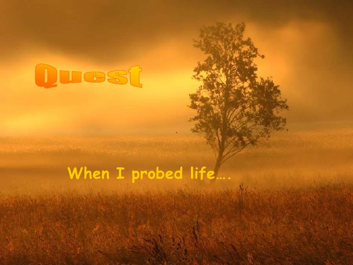 When I probed life….