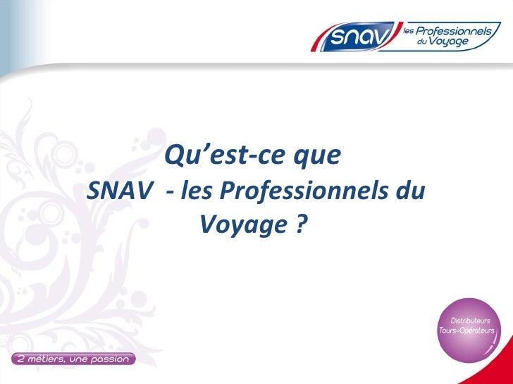 Qu'est-ce queSNAV - les Professionnels du         Voyage ?