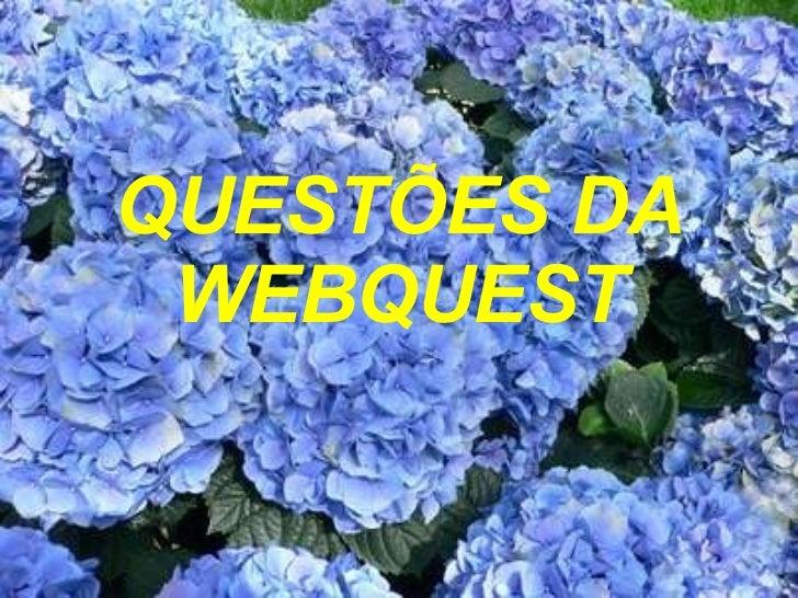 QUESTÕES DA WEBQUEST