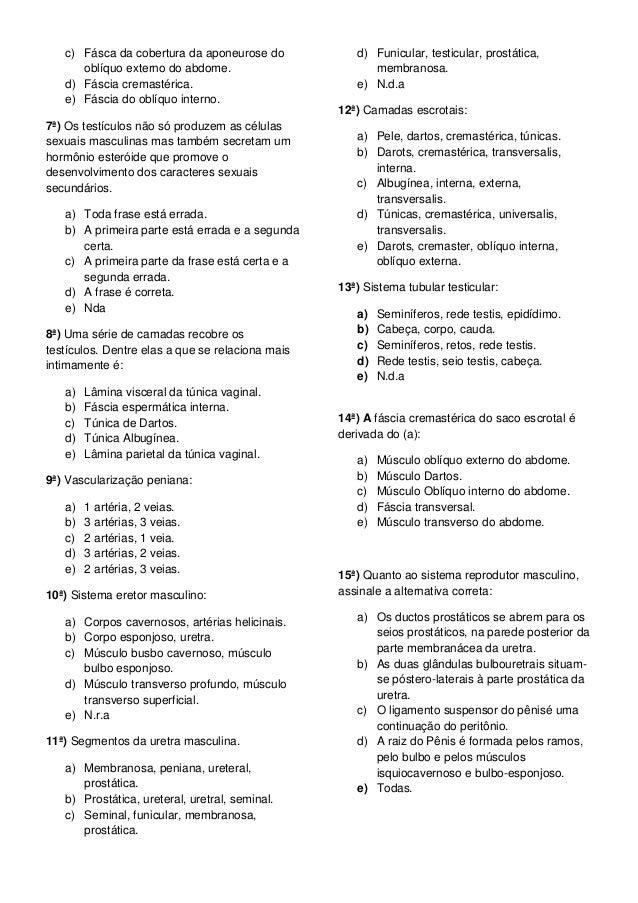 exercicios sobre sistema reprodutor masculino e feminino 5 ano